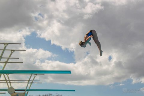 An image entitled `Amy Diving`